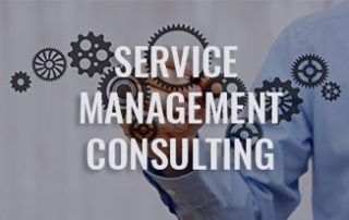 We offer Service Management Consulting, Life Cycle Management, Project Support (R&D to Field Service)